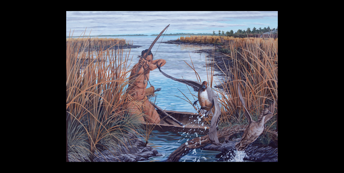 A Nanticoke Indian hunts from canoe